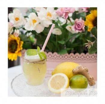 limonada menta ghimbir raw vegan