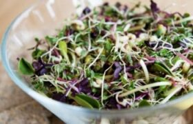 protein salad raw vegan