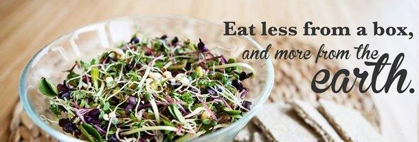 raw vegan salata 610x2081