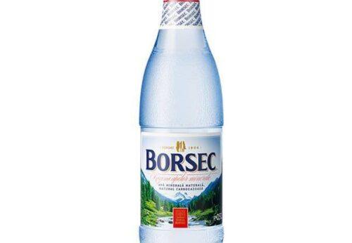 20252 28976 apa minerala 0.5l borsec boam05 1
